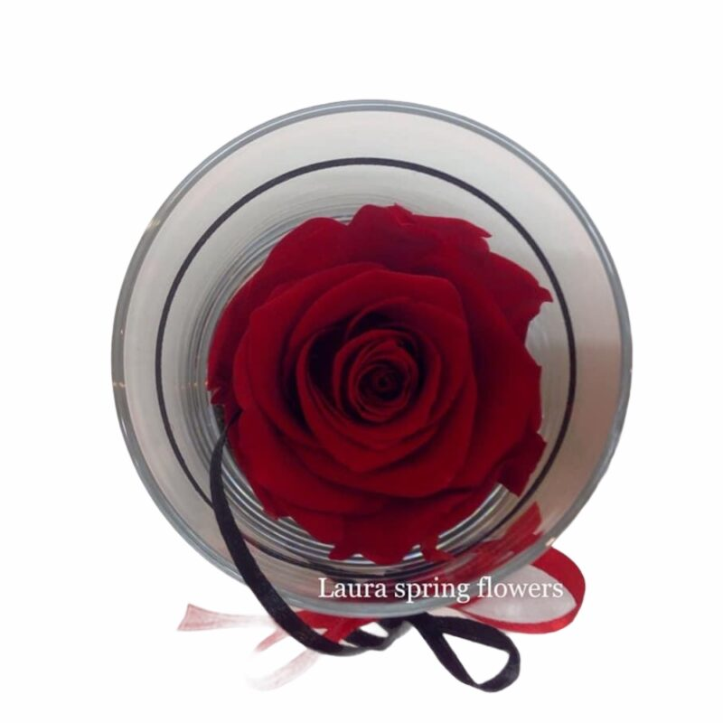 for ever rose